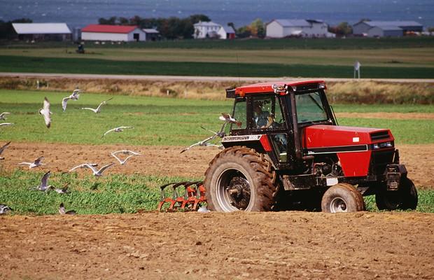 American Farm Bureau Buys Cygnus