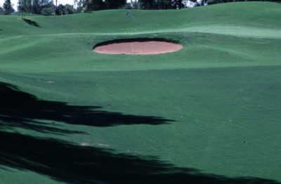 Augustana Golfers Honored