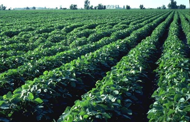 Farm Leader Says Legislative Session Defensive
