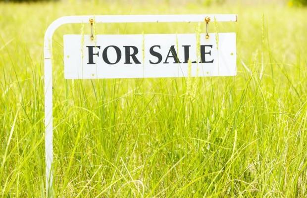 High Price At Land Sale